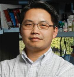 张元豪-斯坦福大学教授